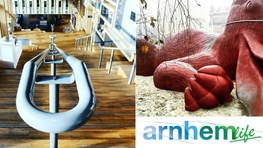 Discount on city tours in Arnhem